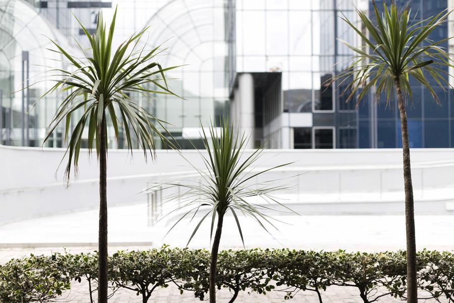 Park-and-Cube_Canary-Wharf_008