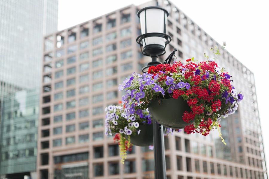 Park-and-Cube_Canary-Wharf_012
