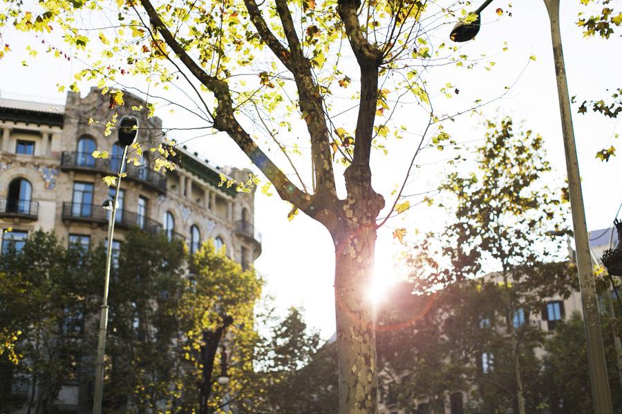 Park-Cube_Barcelona_002