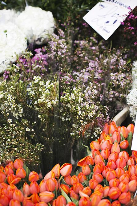 ParkandCube_Flower-Market-Spring_02