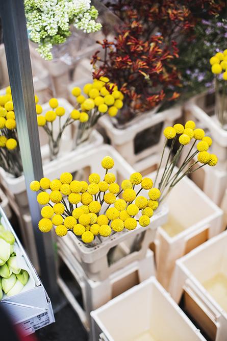 ParkandCube_Flower-Market-Spring_06