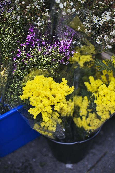ParkandCube_Flower-Market-Spring_13