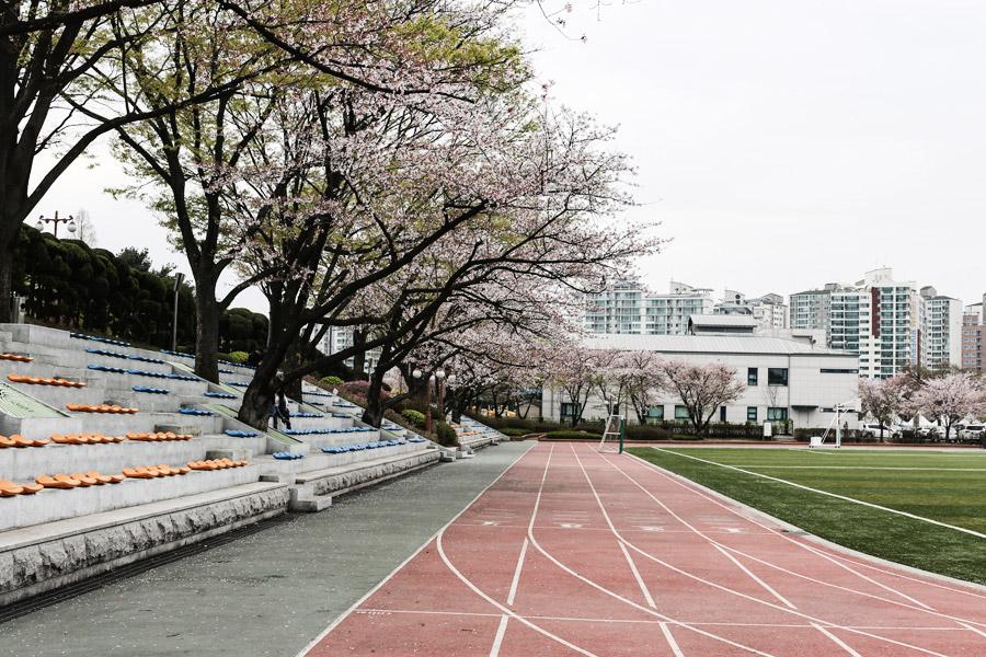 Park-and-Cube_Seoul-Conrad_08