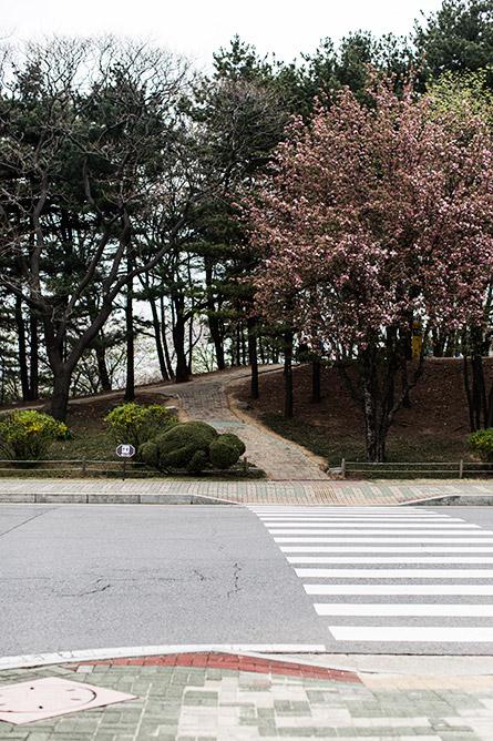 Park-and-Cube_Seoul-Conrad_11