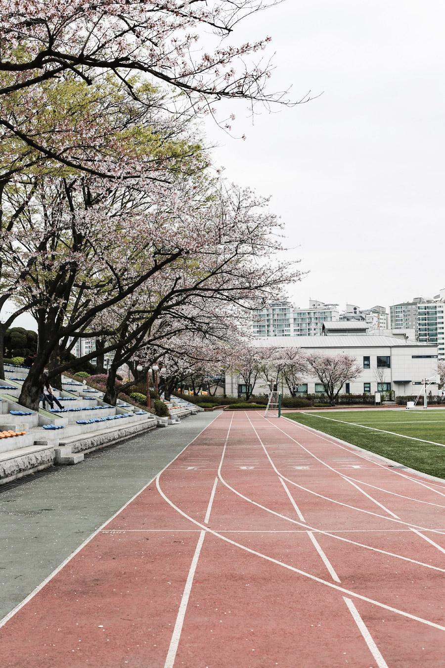 Park-and-Cube_Seoul-Conrad_15