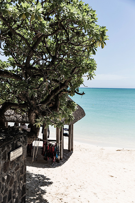 Park-and-Cube_Royal-Palm-Mauritius_015