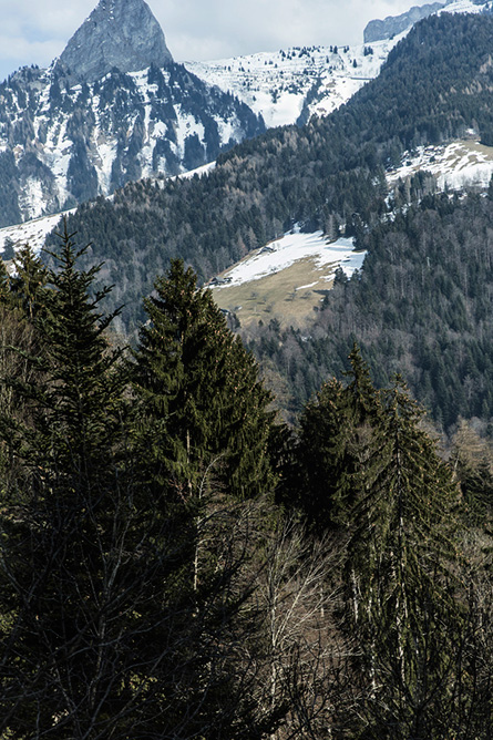 ParknCube_Grand-Bellevue-Gstaad-pt1_004